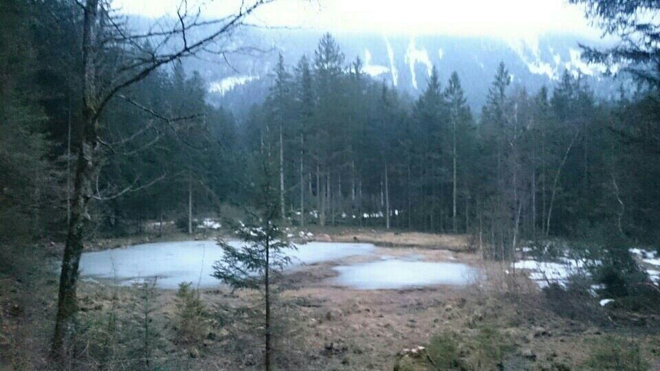 Schwarzsee1.jpg.a08fe306e5f254bcdee60cde0eb46e15.jpg